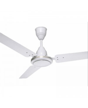 Royal Fan at Rs 600 unit  Ceiling Fans